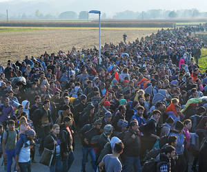 Pictured: Migrants walk towards a holding camp in ...